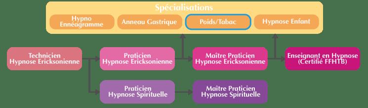 Organigramme formation Hypnose PNL Arrêt du tabac et perte de poids