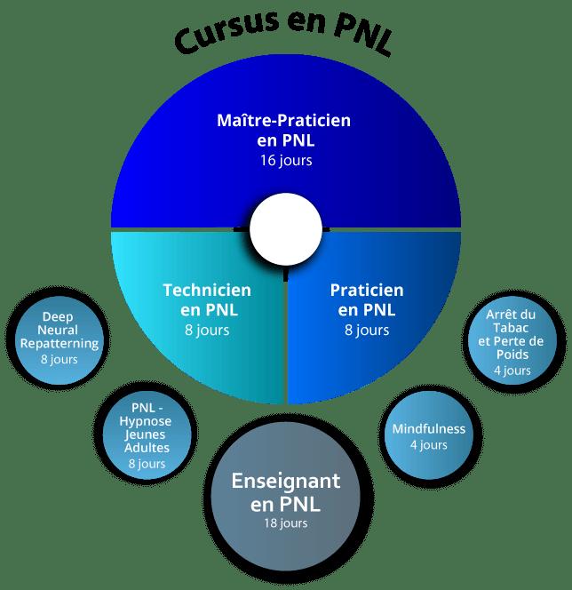 Organigramme Enseignant PNL
