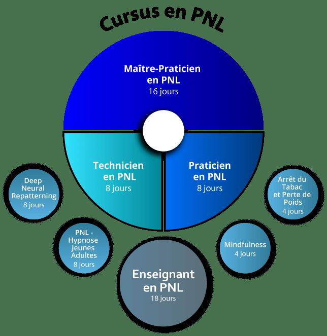 Organigramme Praticien PNL Intensif