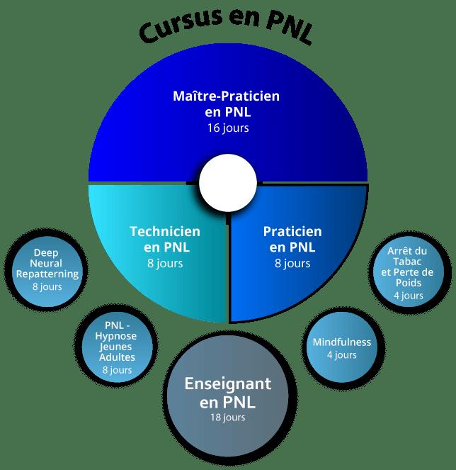 Organigramme Praticien PNL