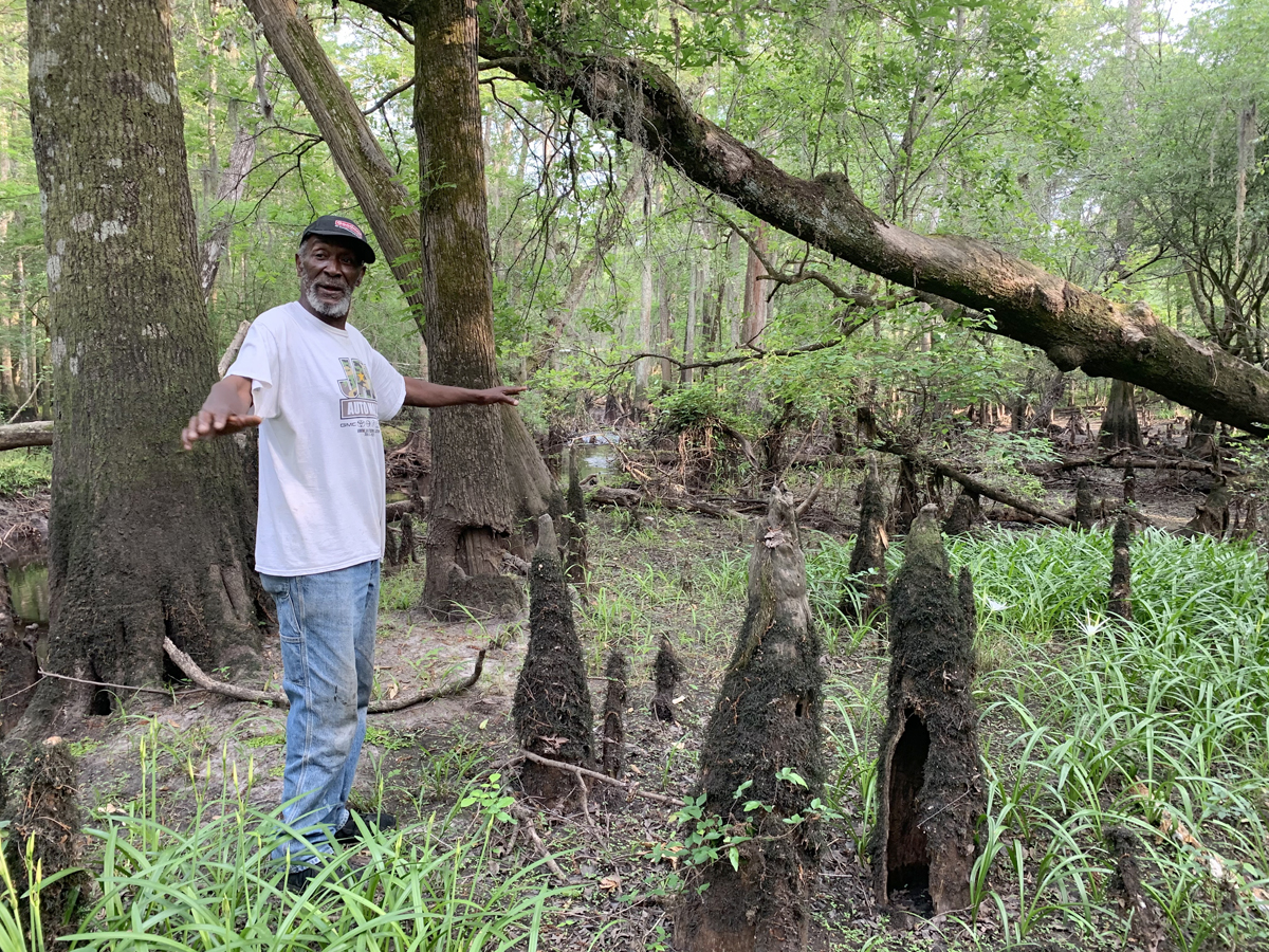 Michael Gore Lumber River