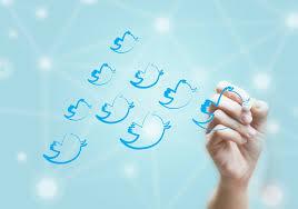 Elecciones 2015: Quién compró seguidores truchos para hacer campaña en twitter