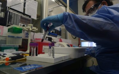 Coronavirus: Los test sin analizar ya superan los 50 mil en el AMBA