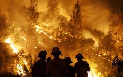 Fuego sin control: denuncian recortes en la lucha contra los incendios y piden que haya una ejecución mínima del Presupuesto
