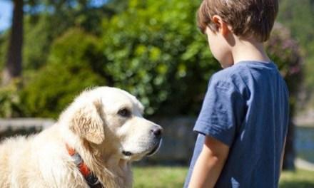 El rol de las mascotas en niños y niñas con TEA según una investigación