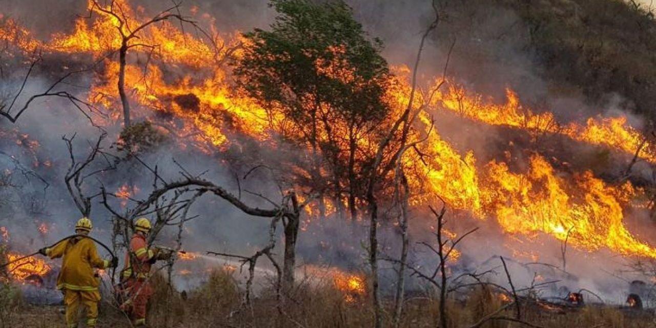 Polémicas y dudas sobre los proyectos que buscan frenar los incendios forestales