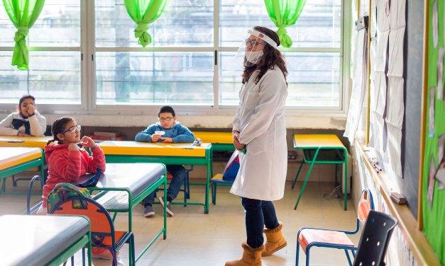 """Temor docente por la vuelta a las aulas: """"Me siento como las vacas yendo al matadero"""""""