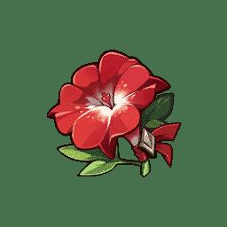 martial artist flower