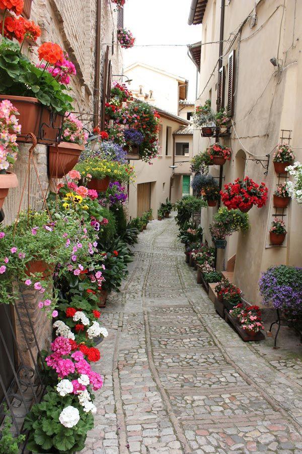 Spello, Perugia, Italy