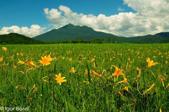 Hiuchigatake 燧ケ岳,  2.356 m (Oze)