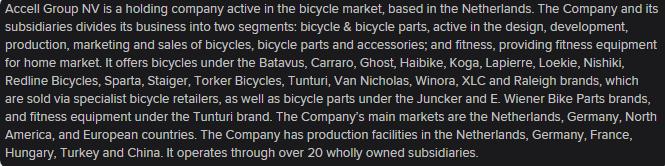 o que é o Accell Group, o que é que a empresa faz?