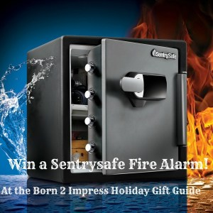 These Holidays Get Peace of Mind With the SentrySafe Alarm Safe! Giveaway