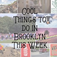 Cool Things to do in Brooklyn This Week: Aug 10-16