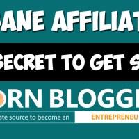 Insane Affiliates #1 Secret to Get Sales! [Case Study]