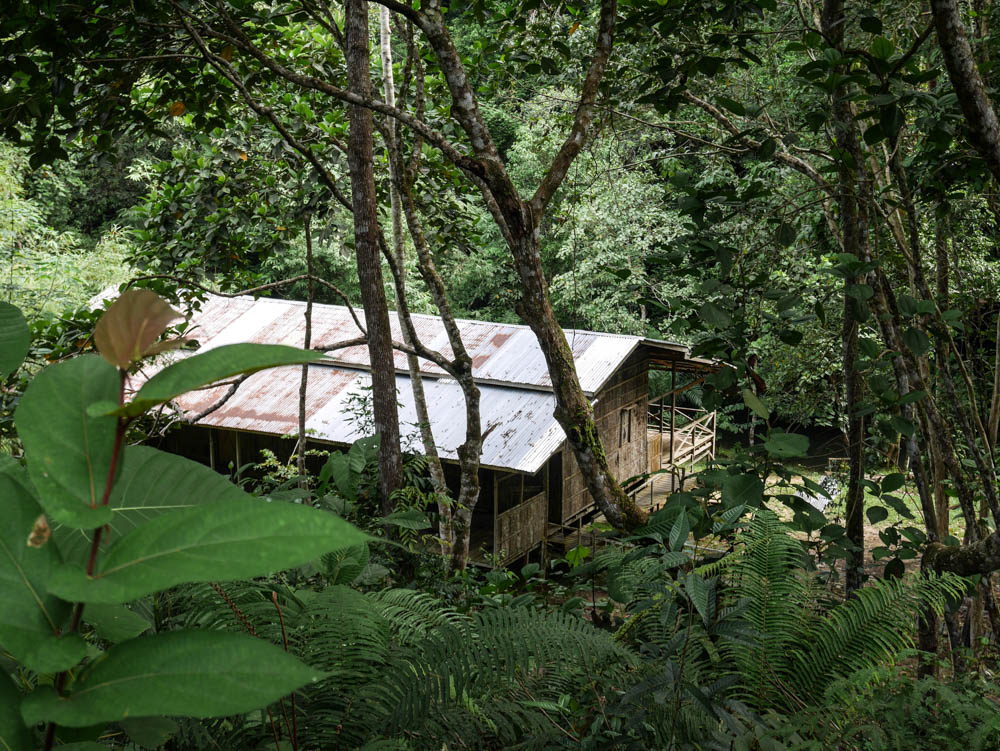 Lubok Kasai jungle camp
