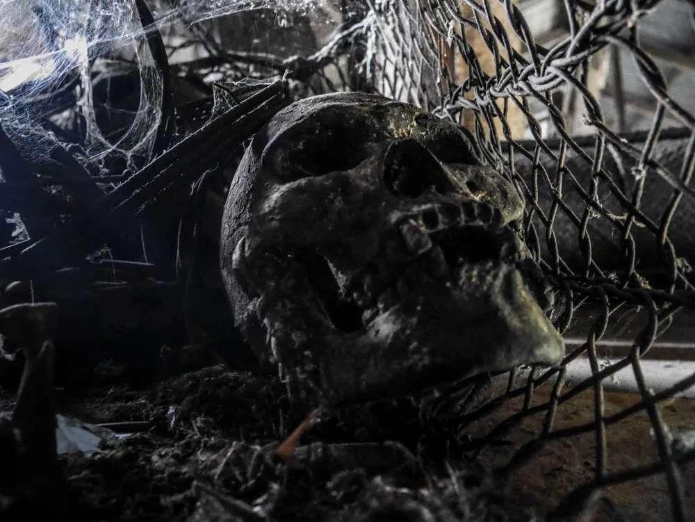 Headhunter Skull from Jambu longhouse