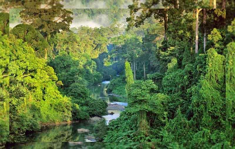 Mengapa Indonesia termasuk negara Beriklim Tropis