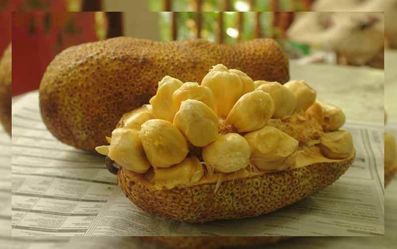 Makanan kuliner khas kalimantan utara