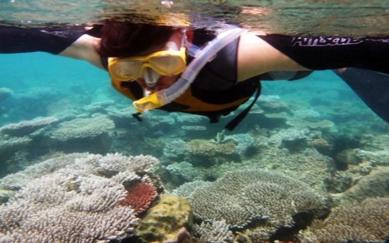 Snorkeling di Pulau Lemukutan