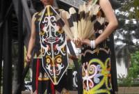 Pakaian Adat Papua Wikipedia