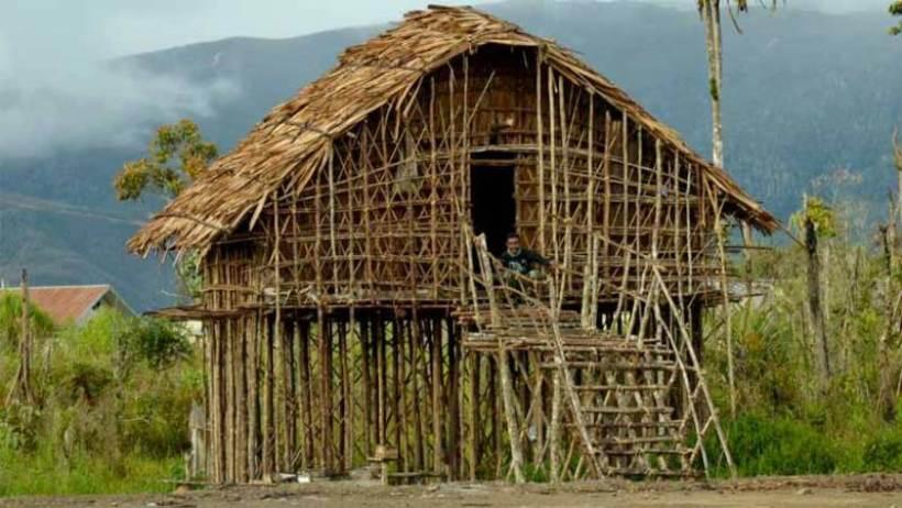 Daftar Terlengkap 5 Rumah Adat Papua Keunikan Gambar Makna
