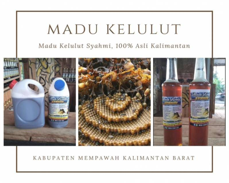 Jual Madu Klaceng, Madu Kelulut, Madu Trigona