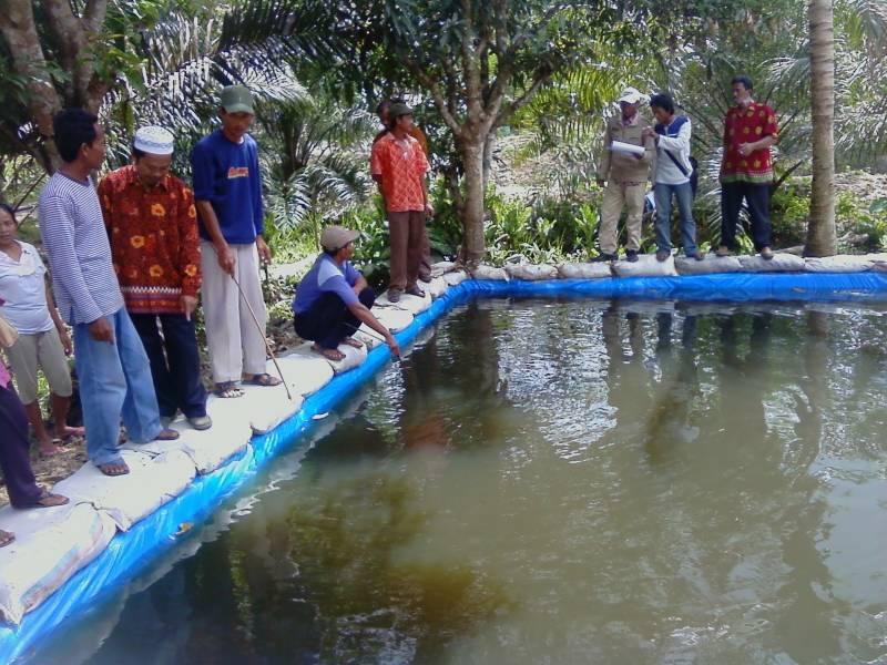 Jenis kolam terpal