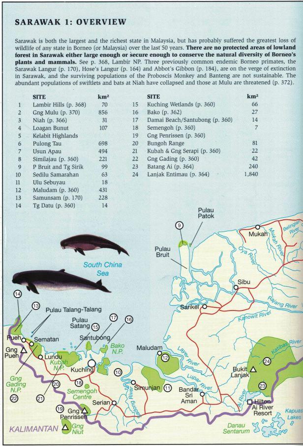 Sarawak Map.jpg