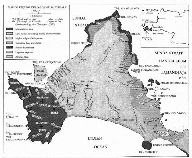 Udjung Kulon Java .jpg
