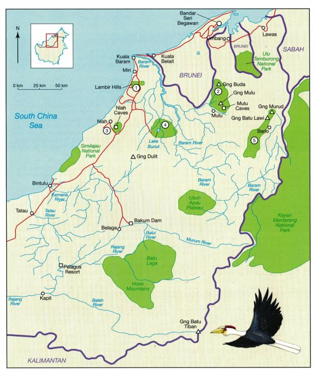 north Sarawak Map.jpg