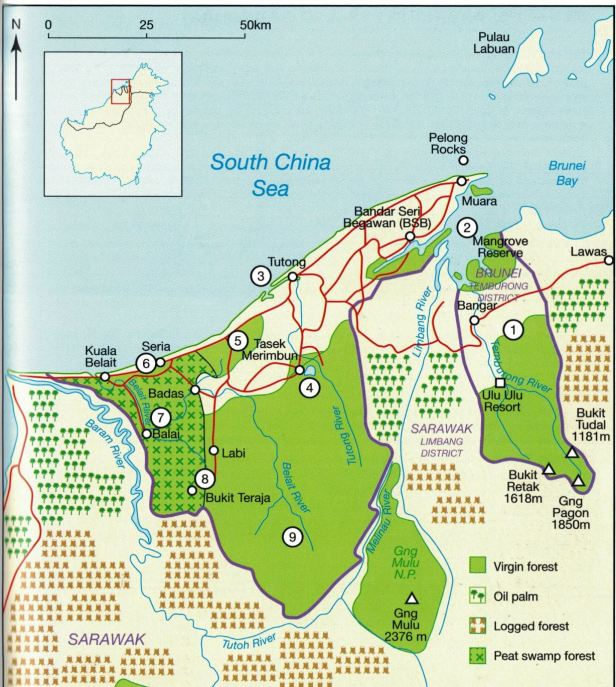 05 Brunei whole