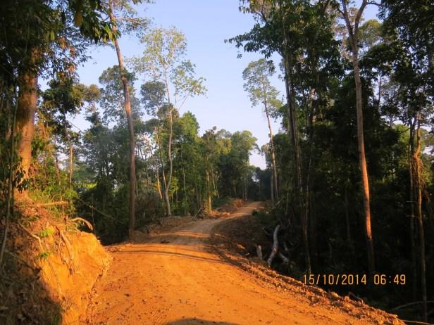 06 Deramakot Sabah IMG_0014.JPG