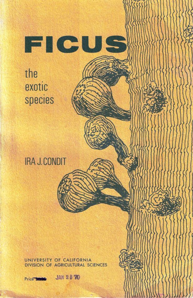 Condit (1969) Cover  -WEB.jpg
