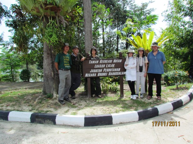 04 Birdwatching Brunei IMG_0399.JPG