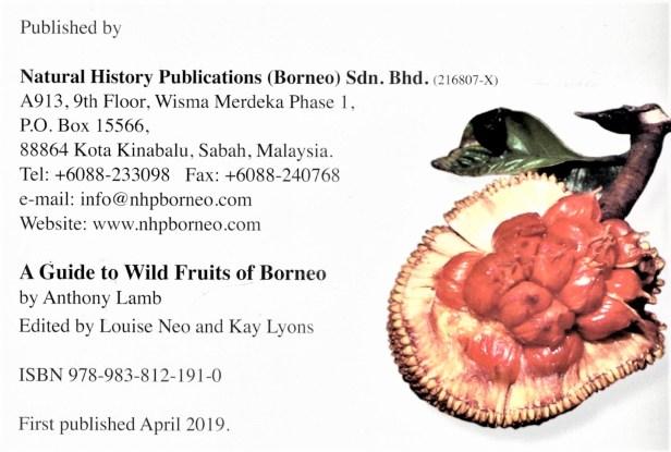 Wild Fruits 02.jpg