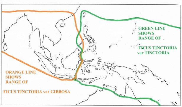 04 Range Map  2 species  original  with text - WEB.jpg