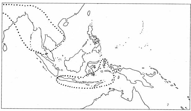 Berg (2005) MAP Rhumphii.jpg