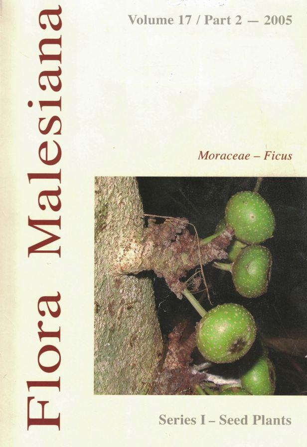Berg (2005) COVER.jpg