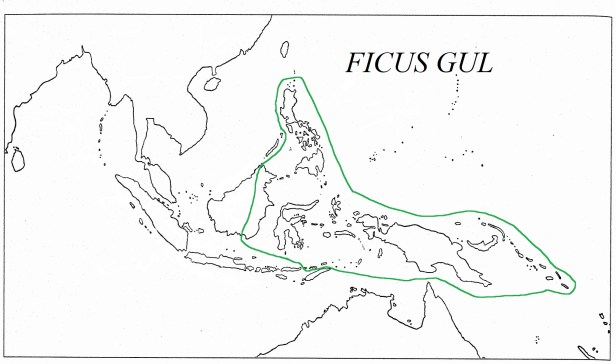 04 Ficus gul Range Map Green Line +text - .jpg