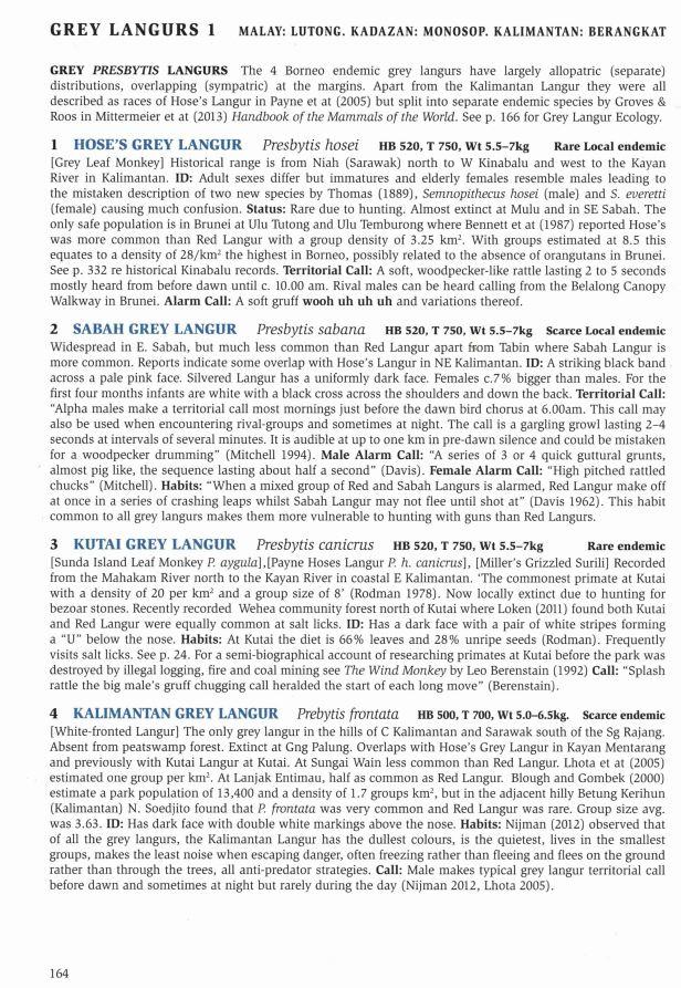 164- Grey Langurs text.jpg