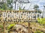 Tampak pohon durian milik Madran yang ditebang PT Mega Elektra. Foto: BorneOneTV/Asmun
