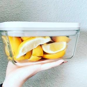 ZWILLING Fresh & Save holder maden friskere længere