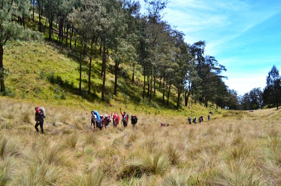 Pendakian Gunung Lawu Kembali Dibuka Via Cemoro Sewu Borobudurnews