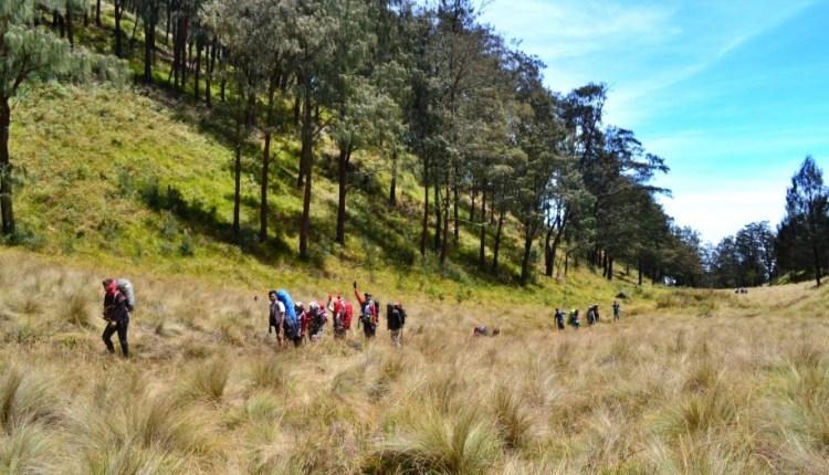 Jalur pendakian Gunung Lawu via Cemoro Sewu