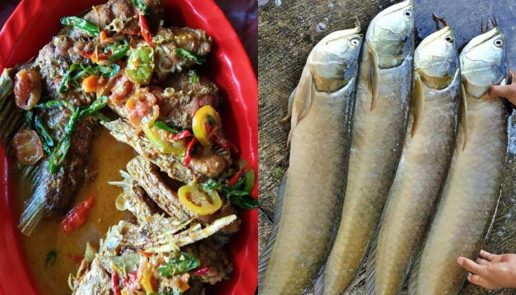 Mangut Ikan Arwana Muntilan