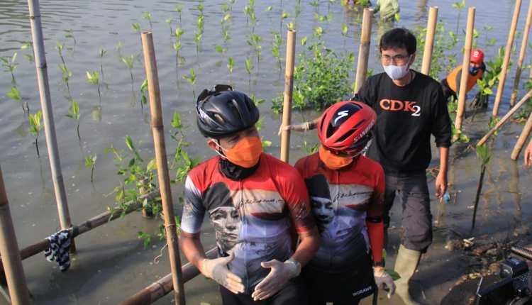 Ganjar pimpin penanaman mangrove