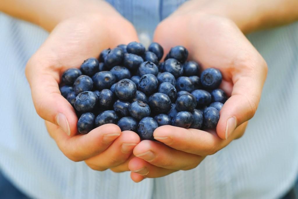 blueberries-u ruci