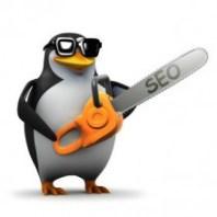 SEO Google Penguin