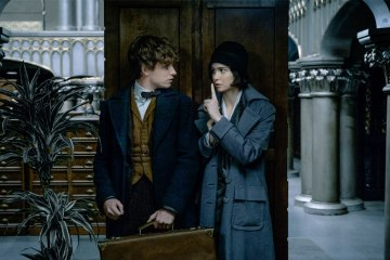 fantastic beasts and where to find them2016