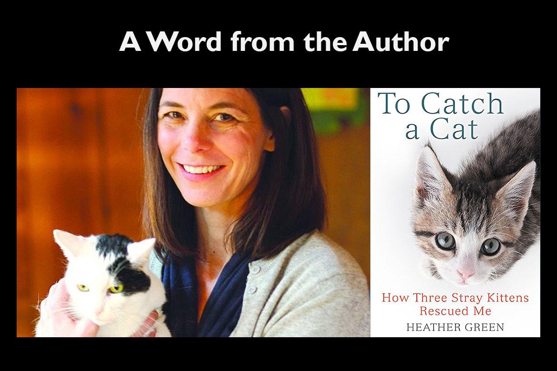 Catch a Cat